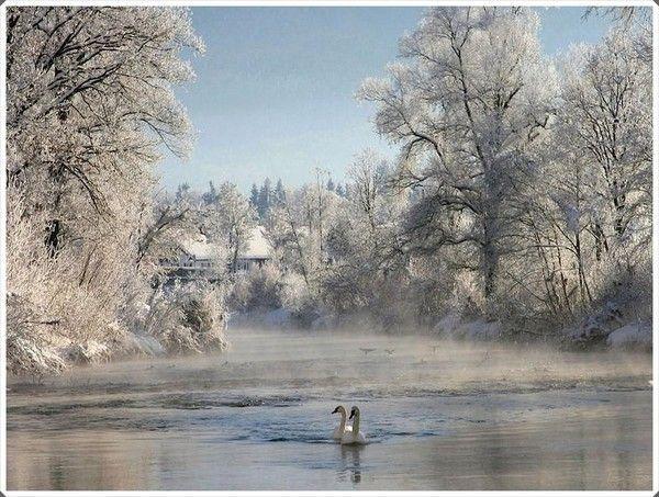 """Résultat de recherche d'images pour """"centerblog belle image d'hiver"""""""