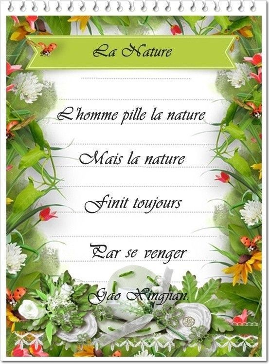 L'homme pille la nature citation