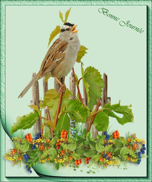 A une fleur poésie 6a562048