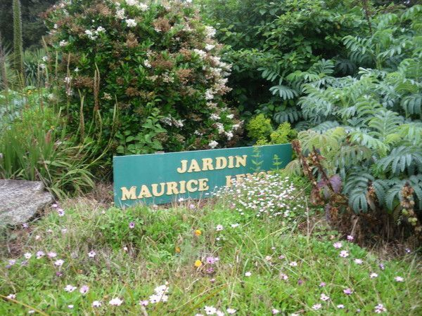 Jardin Beau Vallon Maurice Of Mes Photos De Fleurs
