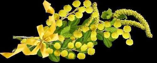 """Résultat de recherche d'images pour """"barre de séparation mimosa"""""""