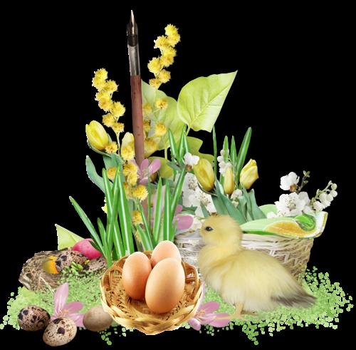 Tubes de Pâques , oeufs chocolat, poussins , lapins