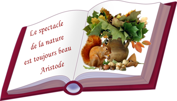 Citation sur la Nature
