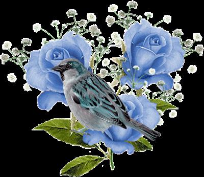bleu2_2.png