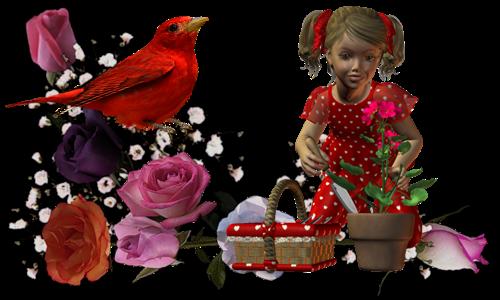 Tubes de Printemps oiseaux brouettes & paniers fleuris
