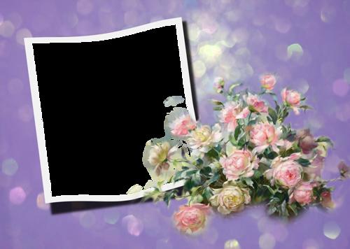 Cadres fleurs pour vos crations - Catalogue de fleurs gratuit ...