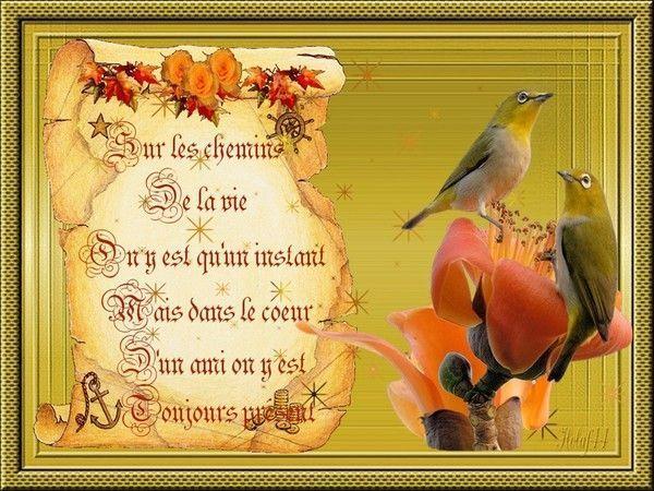 """Sur le chemin de la vie """" citation """""""
