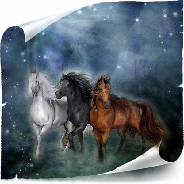 chevaux avec citation