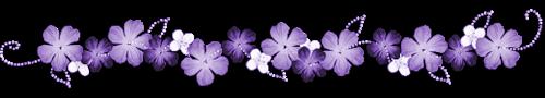 fleurs-violettes.png