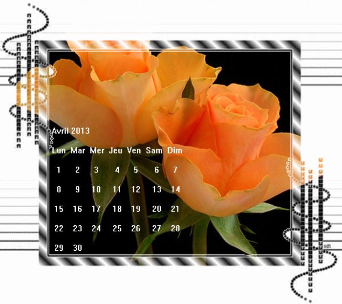 Le langage des fleurs - Signification nombre de roses ...