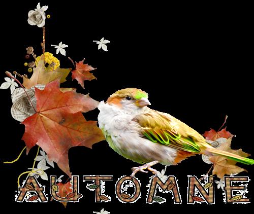 Résultat d'images pour Gifs barres de séparations automne