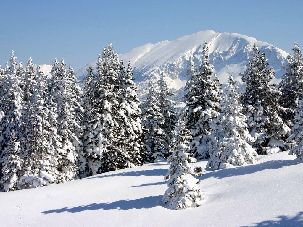 Beau Paysages Pourfont D Ecran Ehhd: Beau Paysage D'hiver