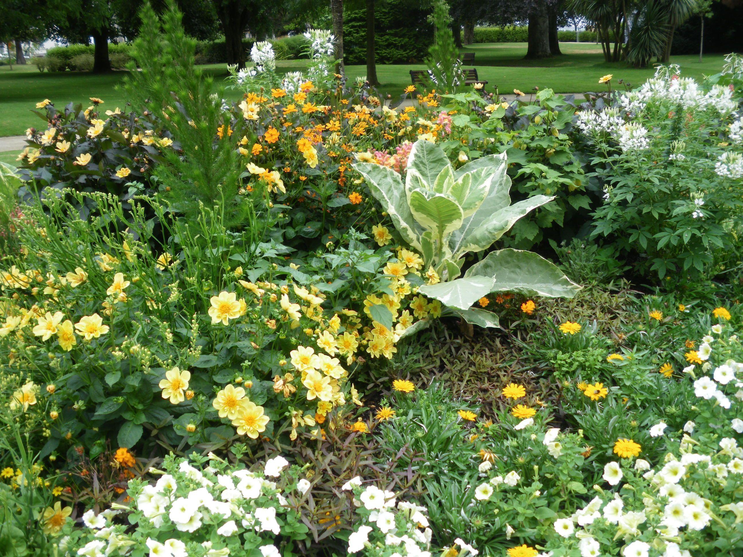 Jardin des plantes saint nazaire loire atlantique - Plantes bord de mer atlantique ...