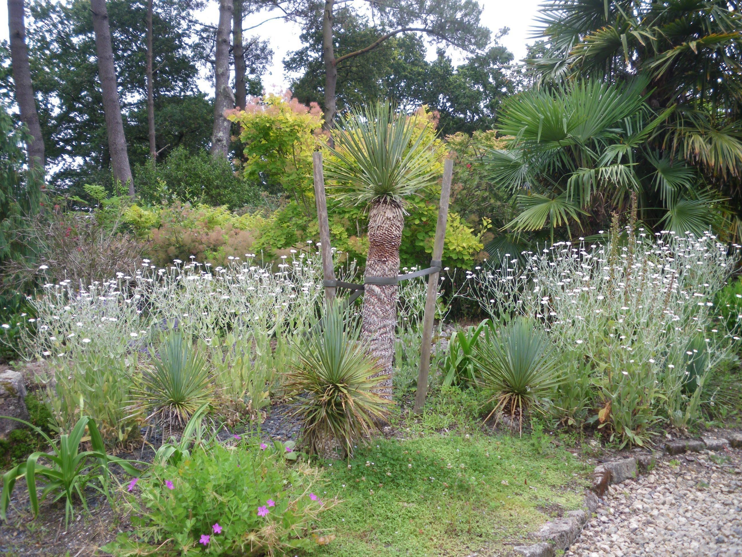 Parc botanique de cornouaille finist re bretagne - Jardin botanique de cornouaille ...