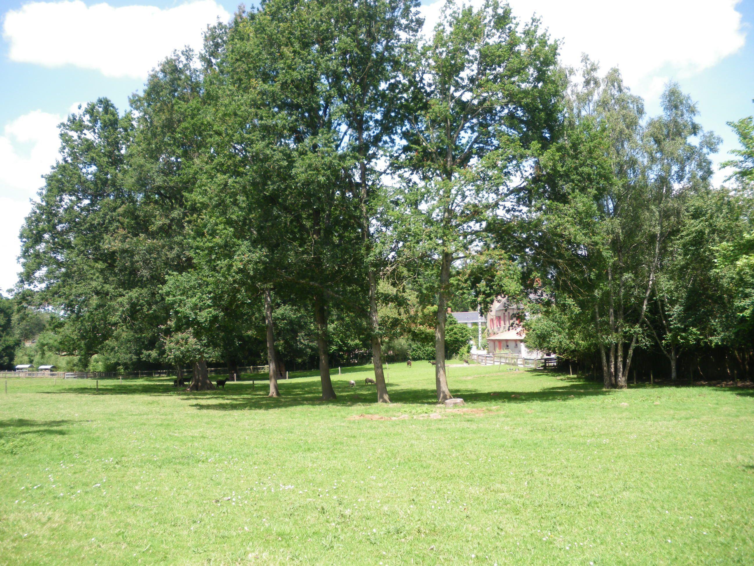 Le parc de la chantrerie la chapelle sur erdre 44 for Espace vert nantes