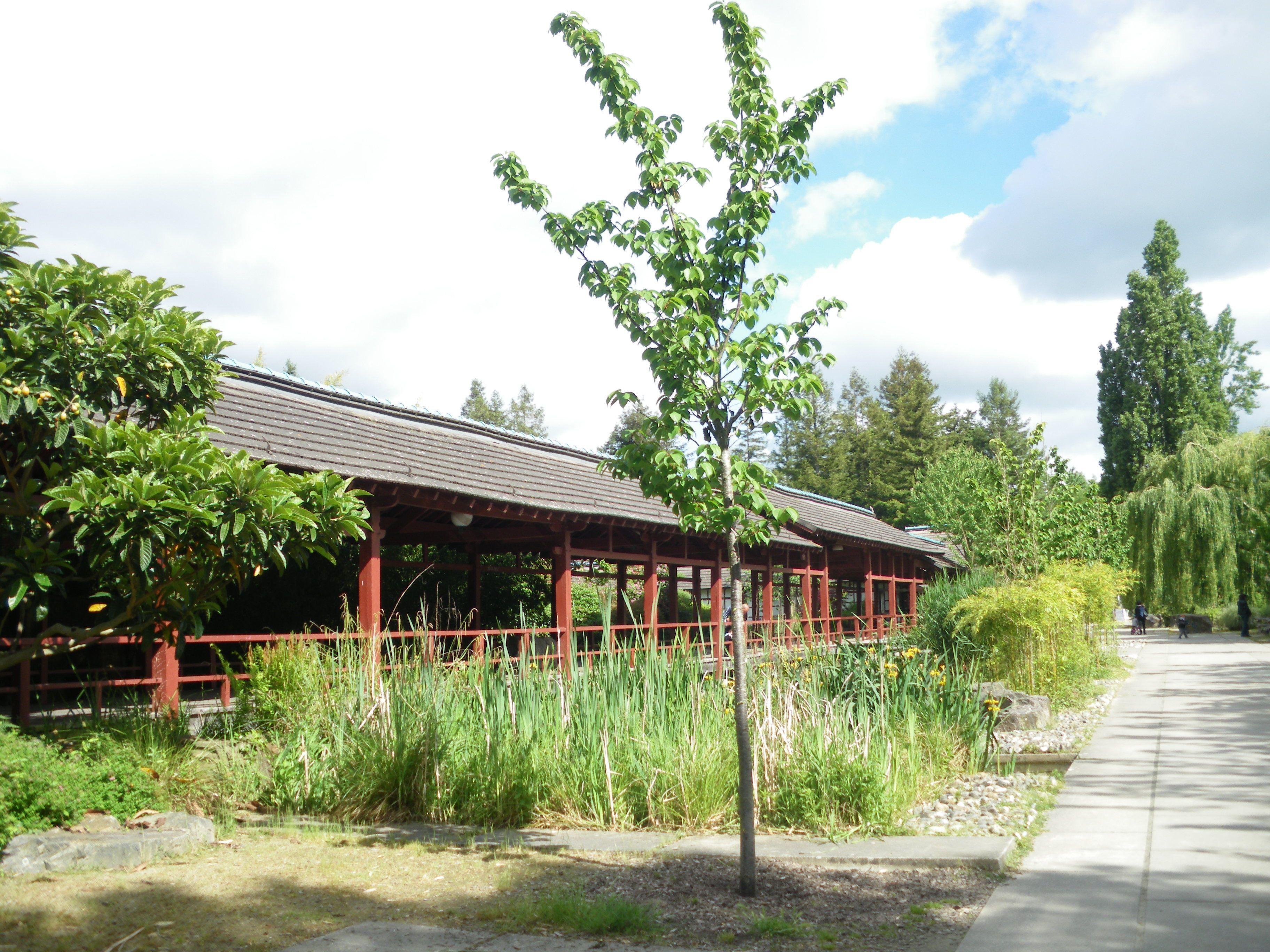 Le jardin de l le de versailles nantes for Architecte jardin versailles