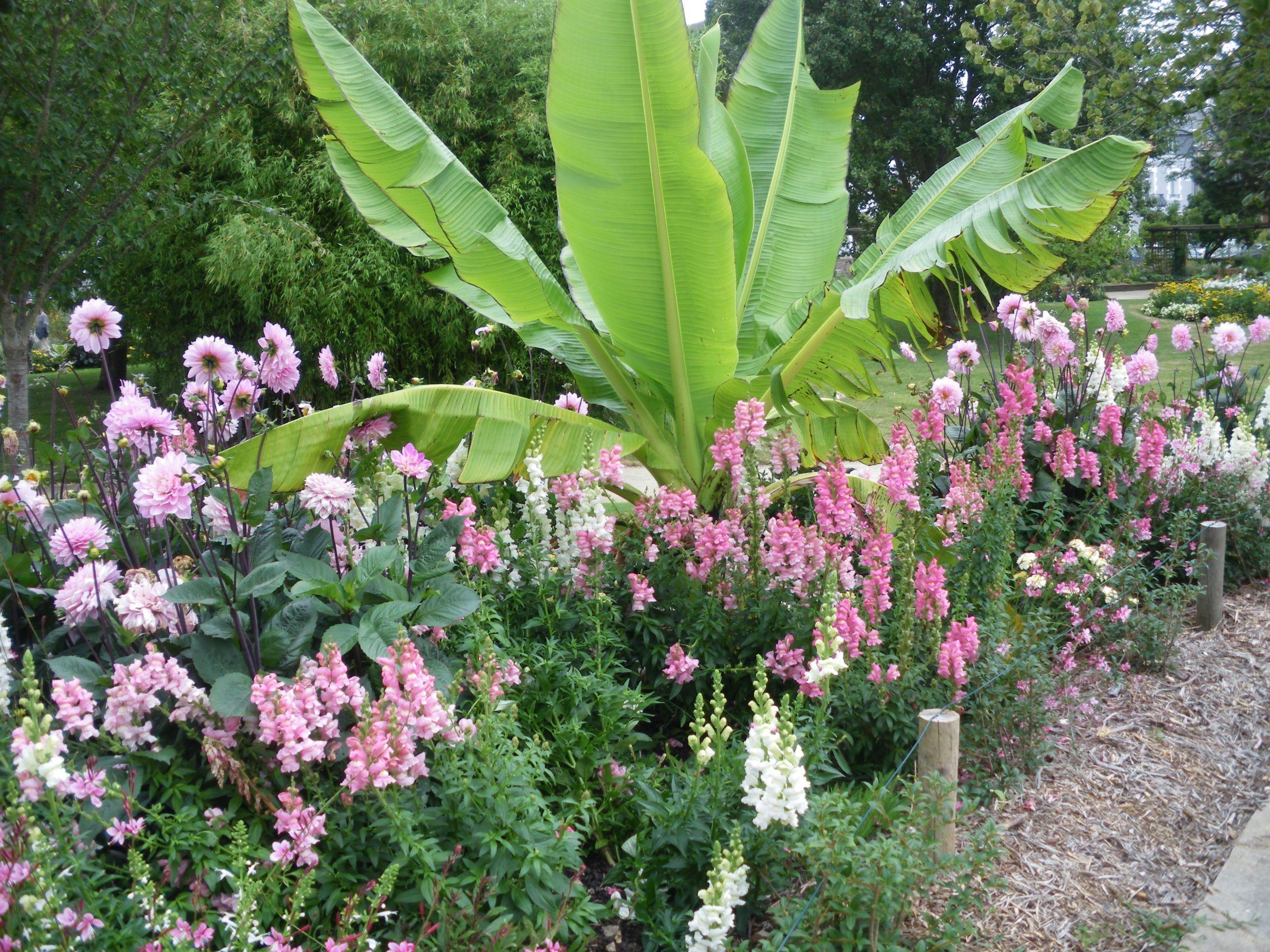 Jardin des plantes saint nazaire loire atlantique - Jardin des plantes saint etienne ...