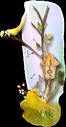 oiseau_6.png